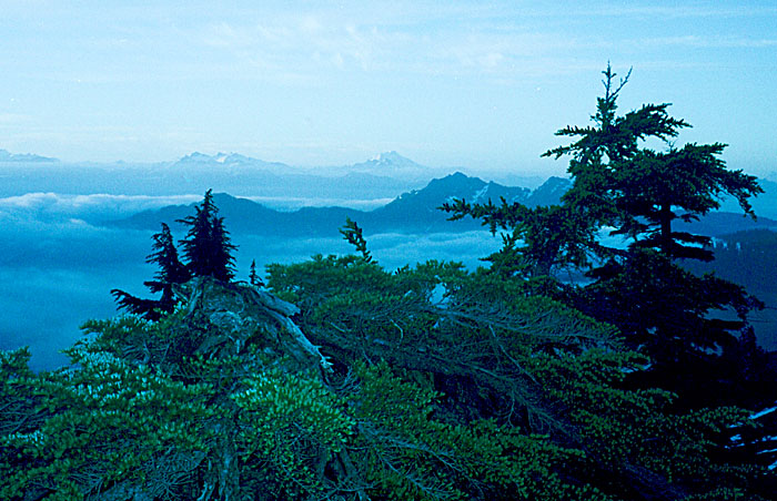 Looking south from my camp on the Mount Watson ridge ... Glacier Peak on the right skyline