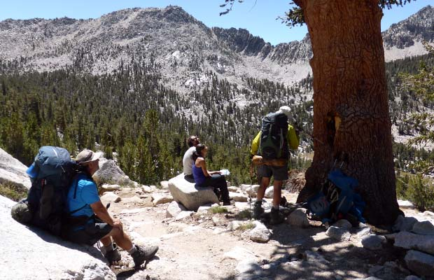 Discussing the presence of an old Foxtail Pine on the JMT above Charlotte Lake