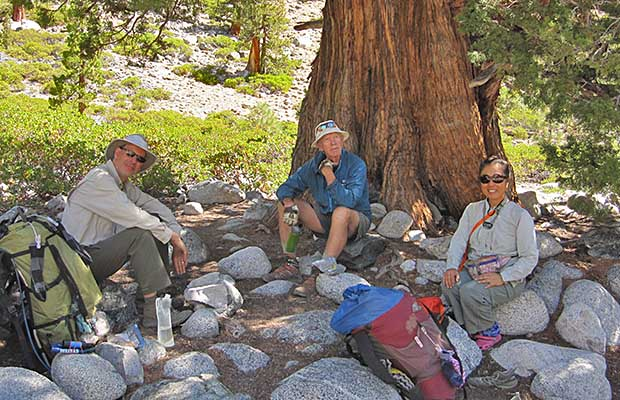 David, Peter and Jeanne under the Sierra Juniper at the Piute Creek intersection.