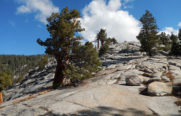 On the granite slabs near the intersection of Bear Creek Trail and the JMT