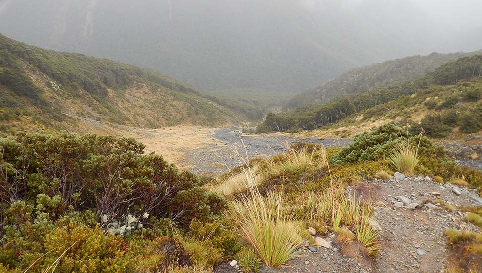 Looking down the very steep and rough slope on the western side of the Travers Saddle - in rain!