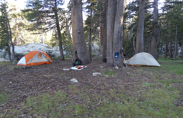 "Our camp at ""Mosquito Heaven"" on the banks of the Walker River West Fork"