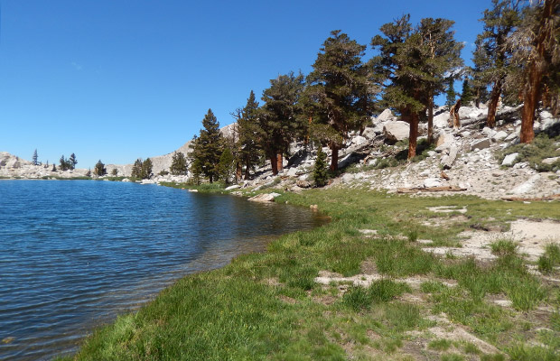 The shoreline of Upper Soldier Lake at an elevation of 11,300'.