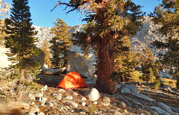 My tent at Big Fox (Tail) campsite near the outlet of Upper Soldier Lake.