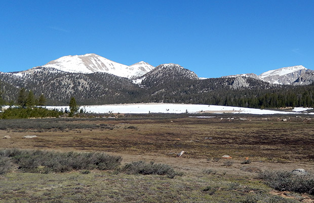 Cirque Peak seen from Horseshoe Meadow.