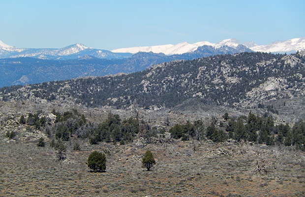 Looking north to the snow covered peaks of the southern High Sierra